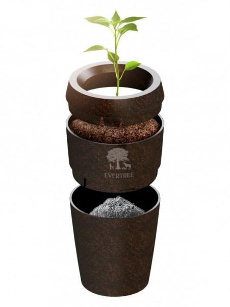 Bio-Urne Evertree